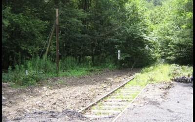 Bundestag: Gespräche über Reaktivierung von Bahnstrecken laufen