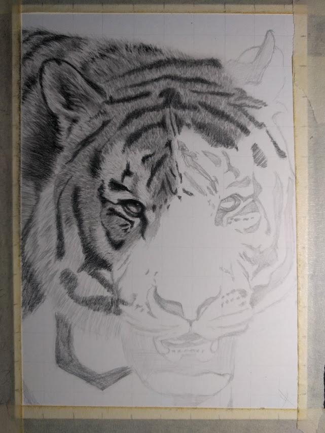 Tiger WIP 02
