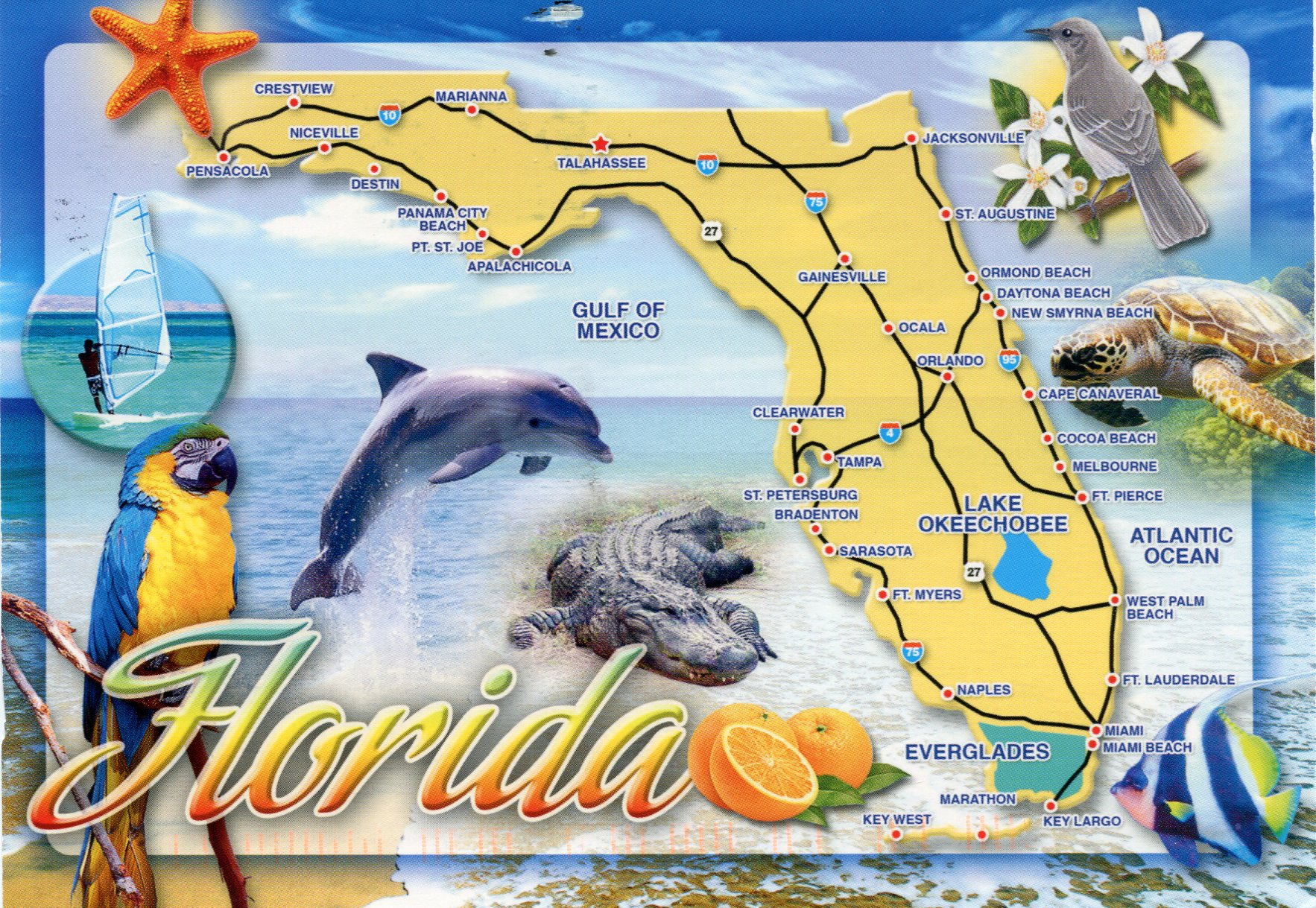 City Of Cape Coral Website
