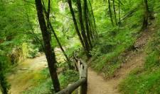 Cammino-di-San-Benedetto-veronicaiovino