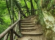 Cammino-di-San-Benedettonatura-veronicaiovino