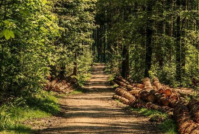 Cammini spirituali