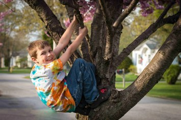 Boy in a tree with background bokeh