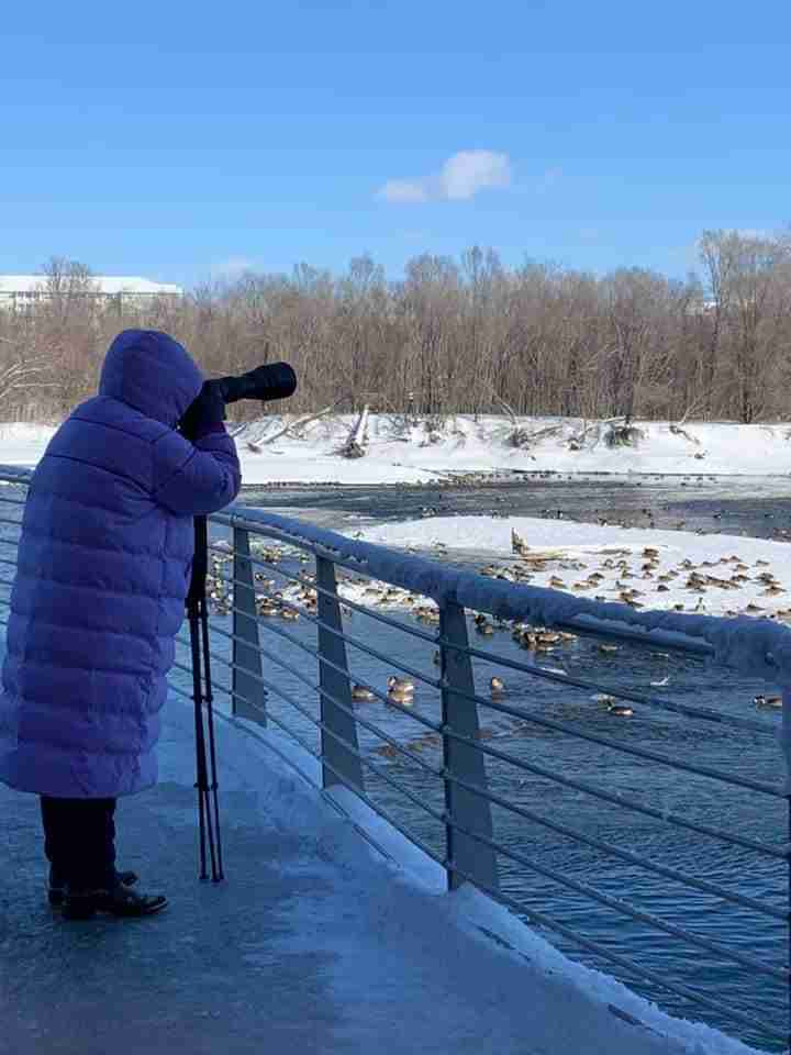 Photographer in pink puffy coat photographing bald eagles
