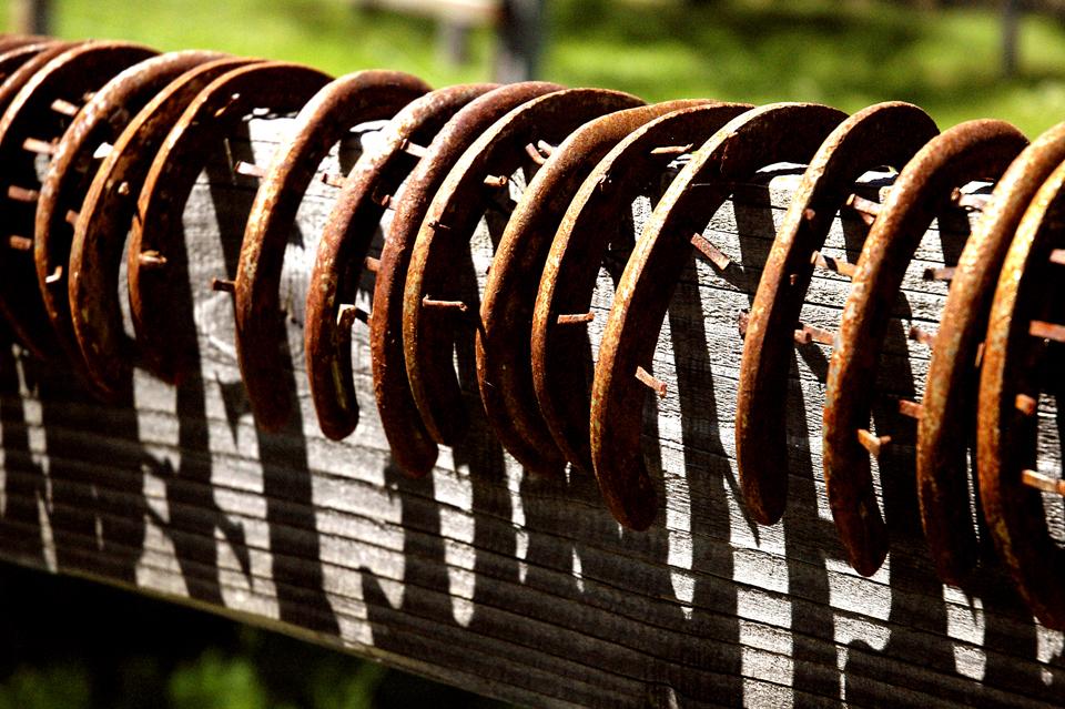 horseshoes1