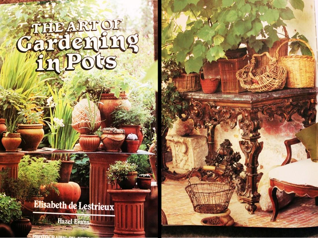 gardening in pots2