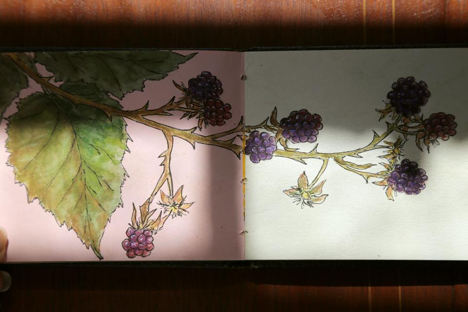 seasonal-journal-veronica-roth-27-copy-copy