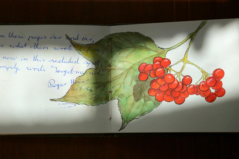 seasonal-journal-veronica-roth-29-copy-copy