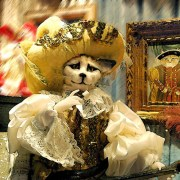venice-travel_carnival-cat
