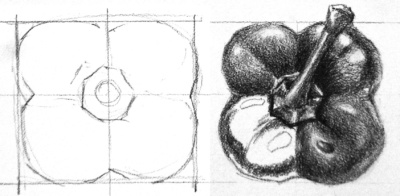 "This sketch shows how to start drawing correctly by sketching out the ""boundaries"" of the object first, and then breaking them down to smaller shapes."