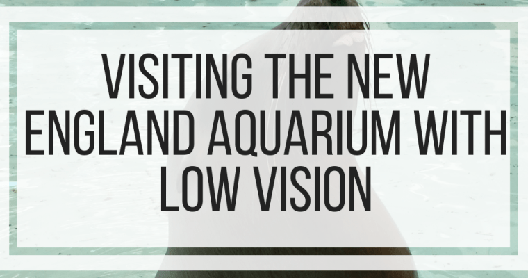Visiting the New England Aquarium With Low Vision