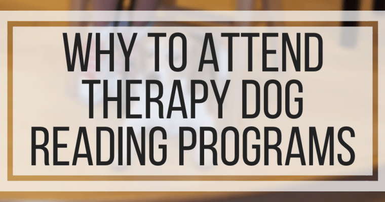 Why To Attend Therapy Dog Reading Programs