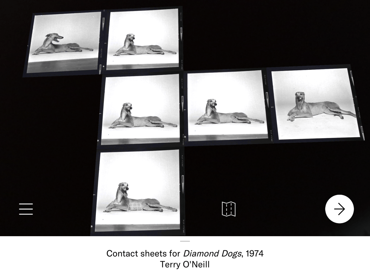 Screenshot of contact sheets for Diamond Dogs