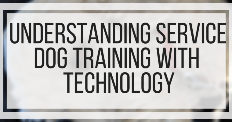 Understanding Service Dog Training With Technology