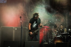 Sepultura_Metalfest2014_32
