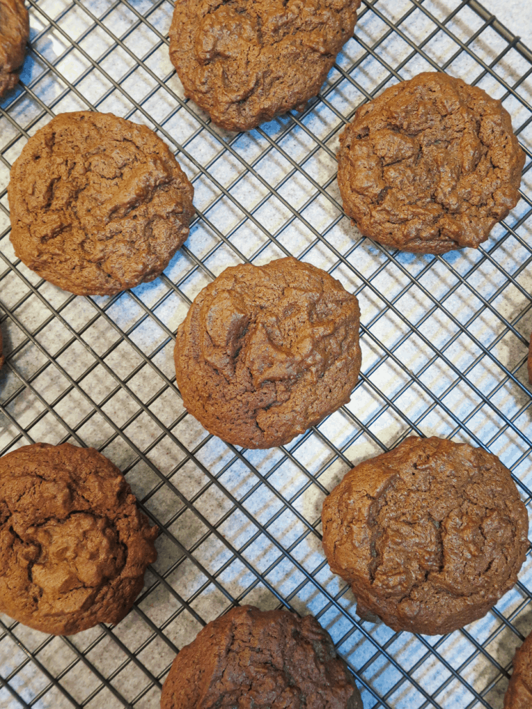 Double Chocolate Cookies with Mint Chocolate Chip Drizzling