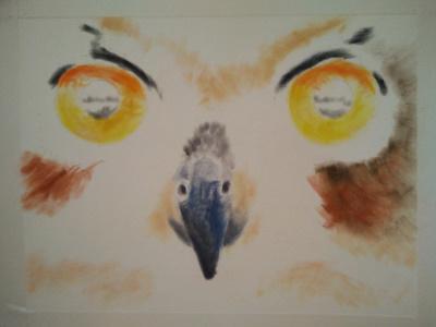 Tekening uil ogen 1