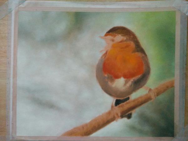 Drawing robin 2