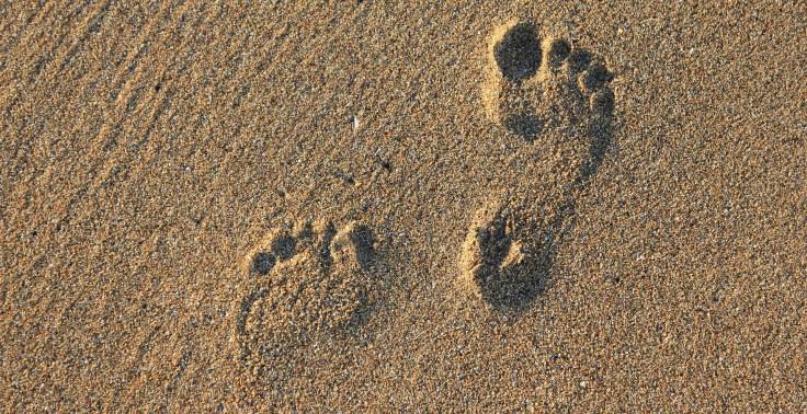 footprint-2353510_1920.jpg