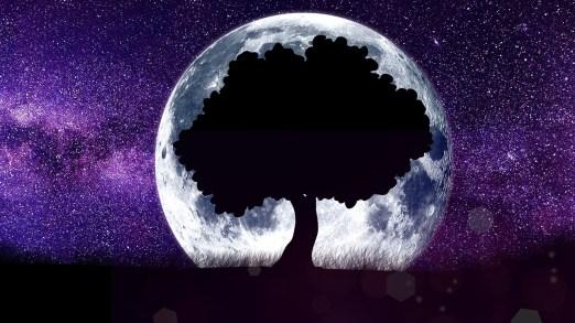 moon-3295860_1280