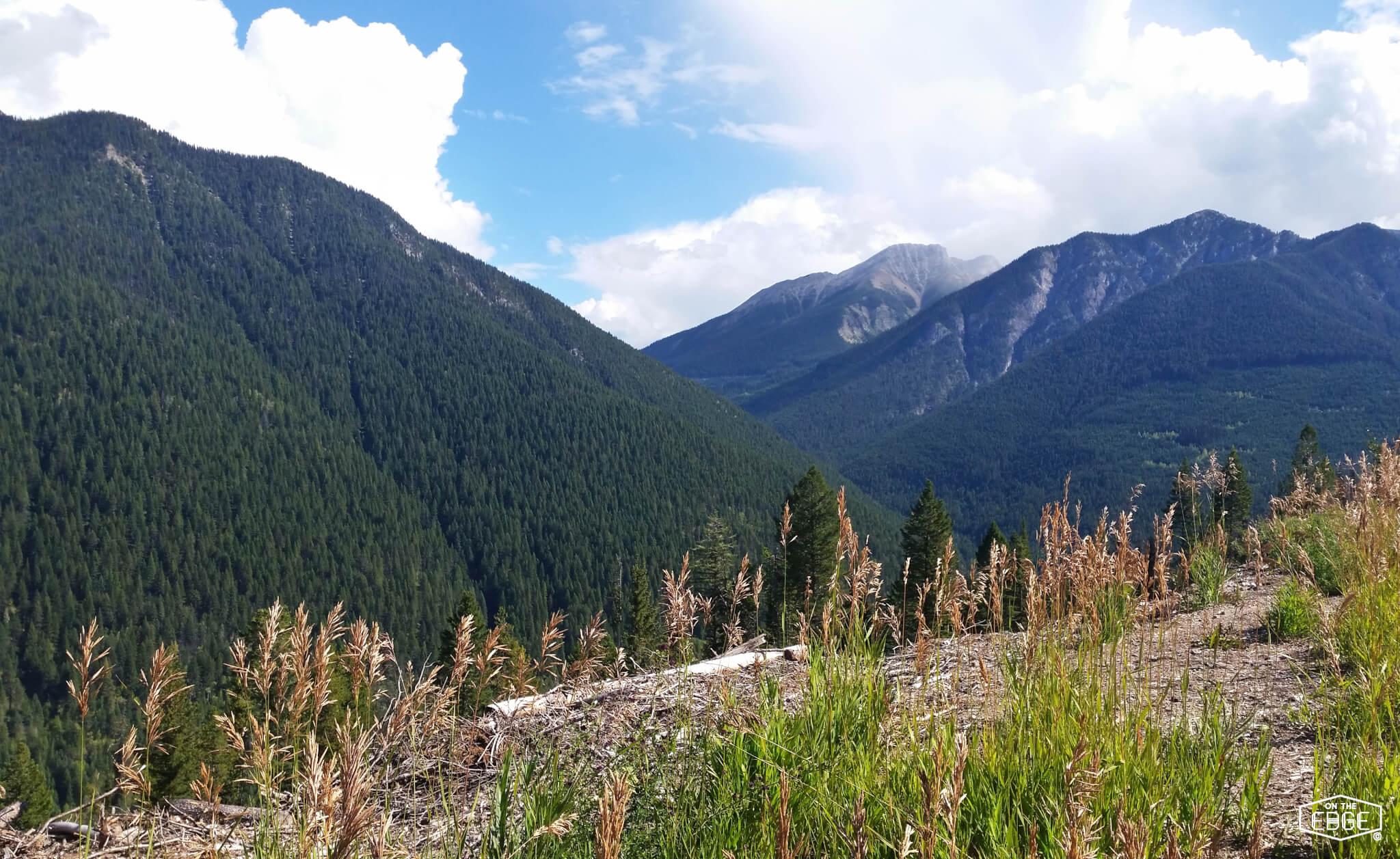 Récit de voyage en Alberta 2016