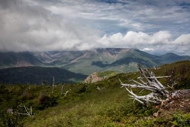 Image au Mont Ernest Laforce pour notre article 4 sentiers pour de surprenantes rencontres en Gaspésie