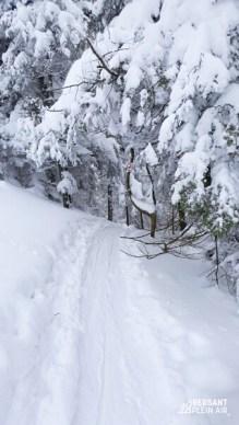 OntheEdgeHiking_Rando-Alpine_Orford_04