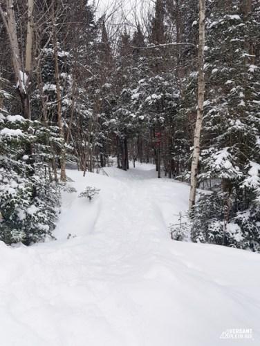 Versant_Plein-air_Mont-Gosford-hiver_LR_02