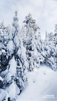 Versant_Plein-air_OwlsHead-hiver_LR_06