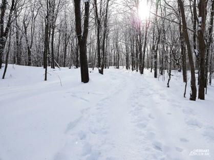Versant_Plein-air_Shefford-hiver_LR_05