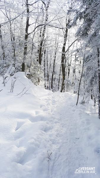 Versant_Plein-air_Sutton-hiver_LR_01