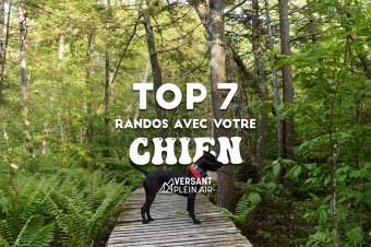 Top 7 – Randos à faire avec votre chien – Partie 2