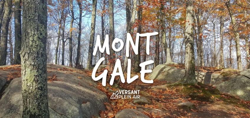 Mont Gale