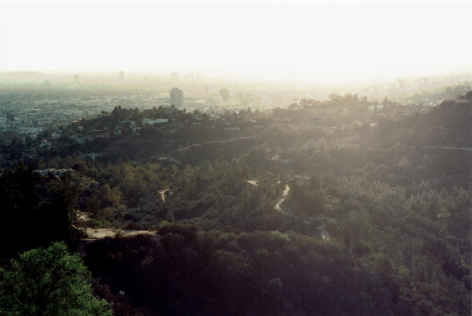 California_Hazy LA at Griffith Park A__Fujicolor 400