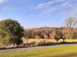 Yankee Woods Grove 6.jpg