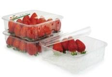 Strawberries top sealed