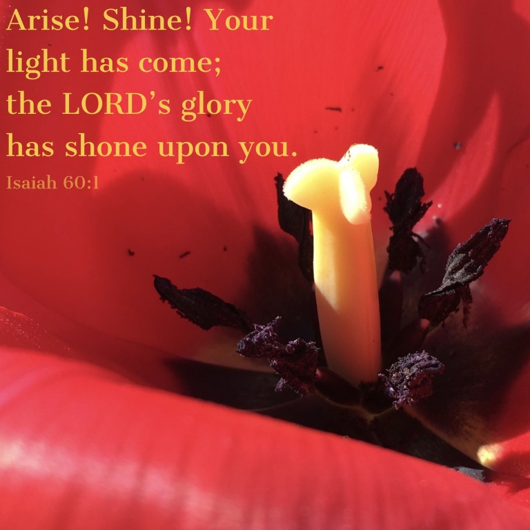Verse Image for Isaiah 60:1 - 1x1