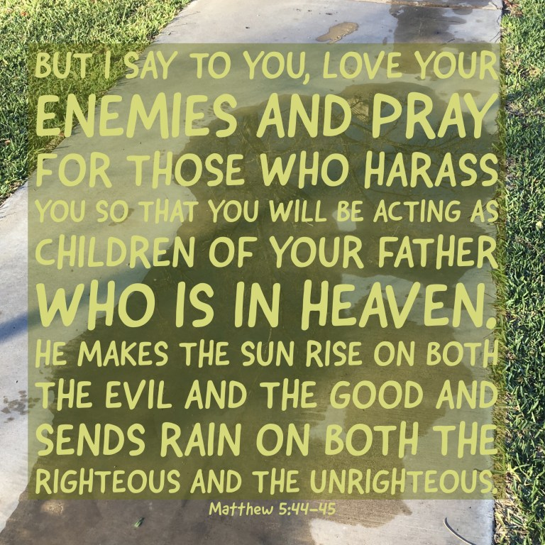 Verse Image for Matthew 5:44-45 - 1x1