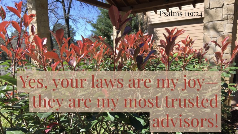 Verse Image for Psalms 119:24 - 16x9