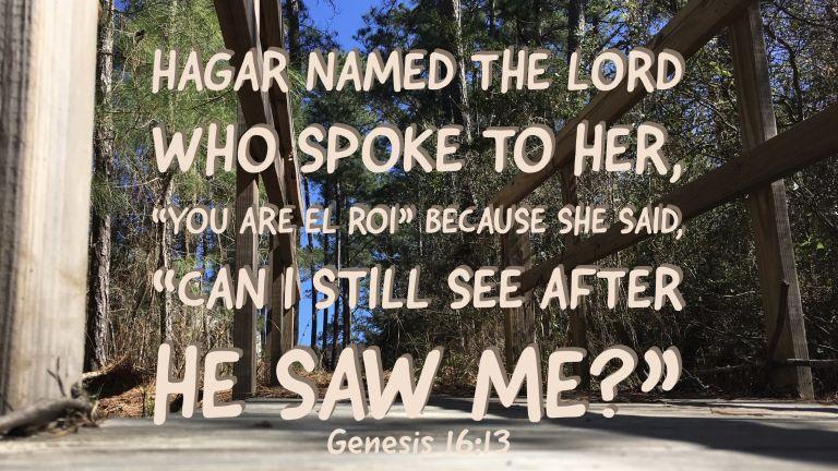 Verse Image for Genesis 16:13 - 16x9