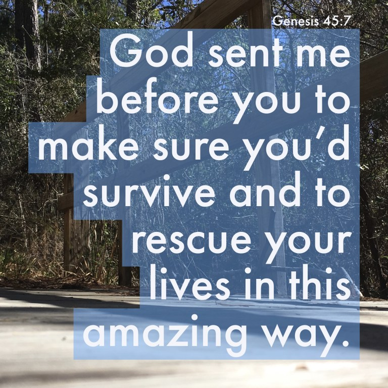 Verse Image for Genesis 45:17 - 1x1