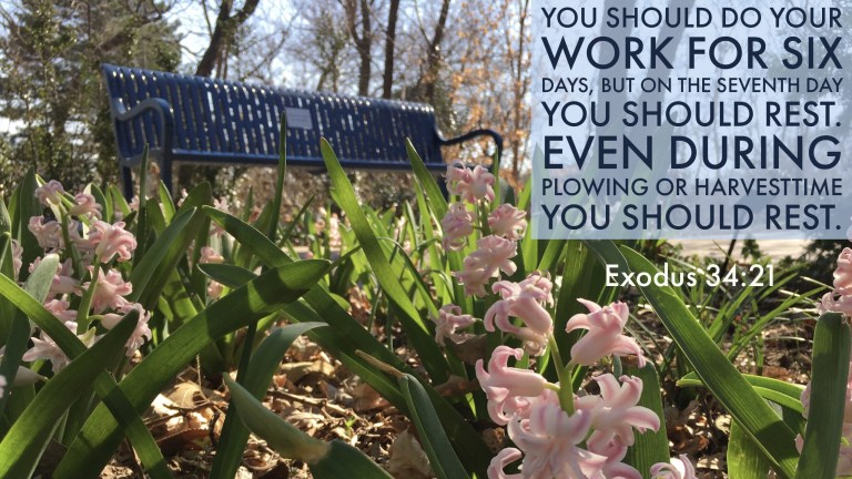 Verse Image for Exodus 34:21 - 16x9
