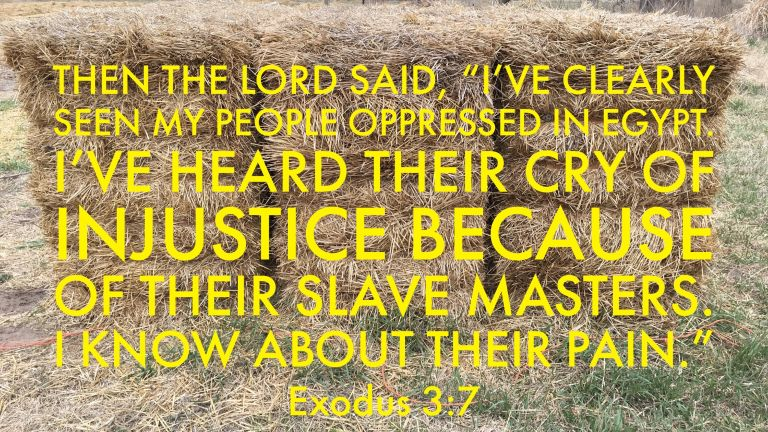 Verse Image for Exodus 3:7 - 16x9