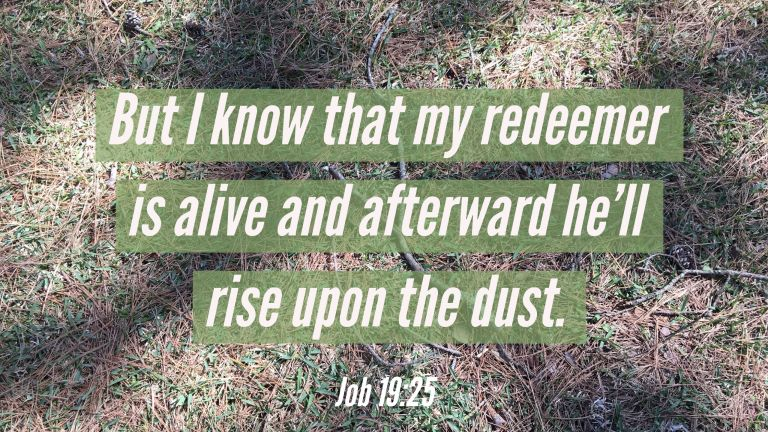 Verse Image for Job 19:25 - 16x9
