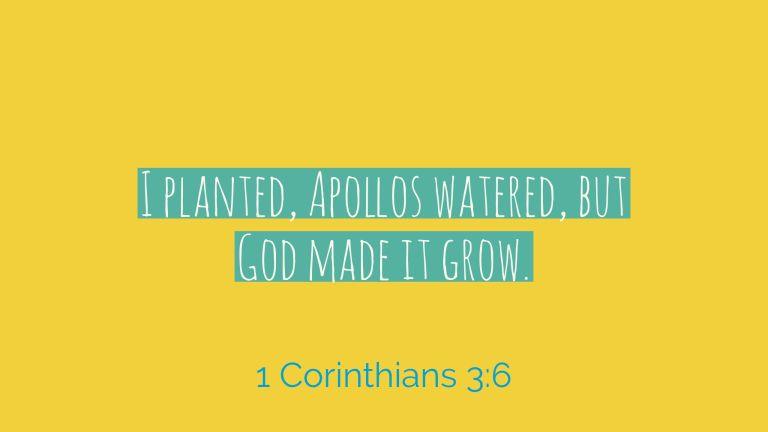 Verse Image for 1 Corinthians 3:6 - 16x9