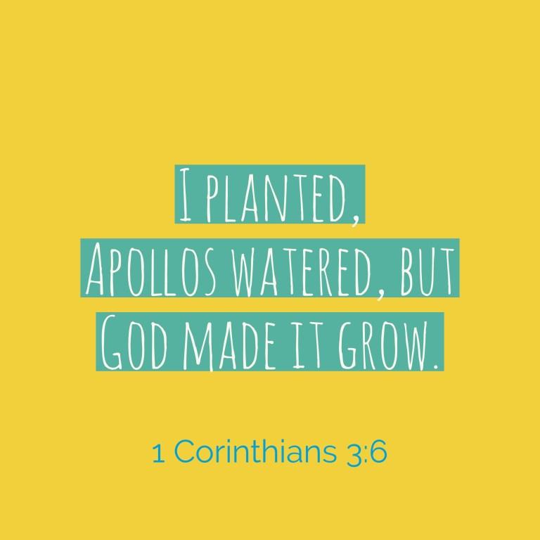 Verse Image for 1 Corinthians 3:6 - 1x1
