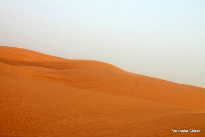 Dune bashing - Dubai (2)