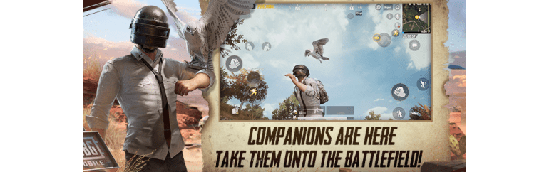 PUBG Mobile Companion System The Falcon