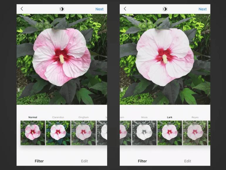 Lark Filter for Instagram Posts