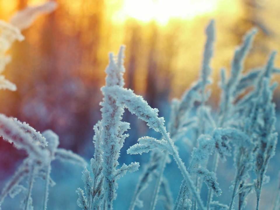 Wie schön die Natur im Winter ist